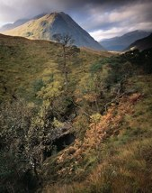 Glen Etive in Autumn with An Grianan thumbnail